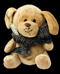 teddy-242876_1280