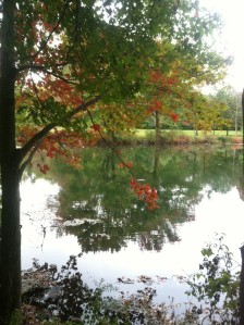 Fall at Lenape pond 2014