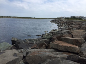 Sea wall Wildwood